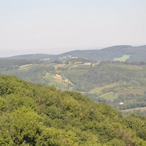 Bild zum Weblog Wanderung Kahlenberg