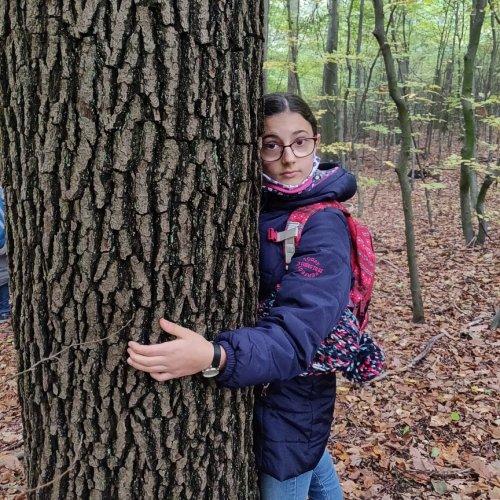Bild zum Weblog Ausflug Waldschule Ottakring